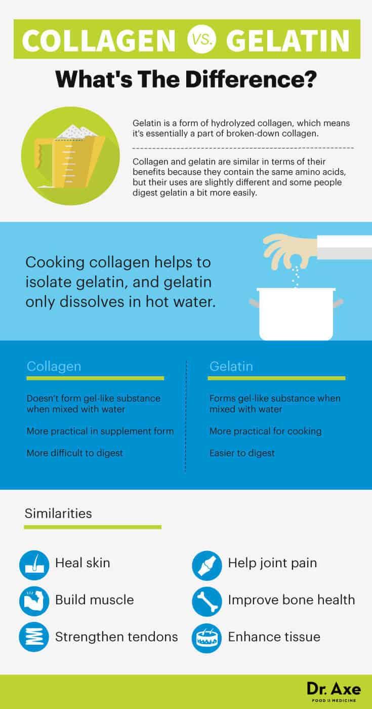 Gelatin vs Collagen