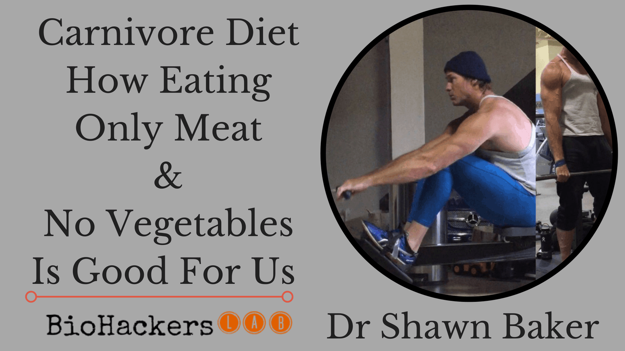 Dr Shawn Bakers' Carnivore Diet Plan (Benefits + Results)