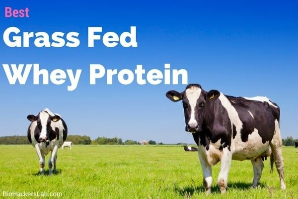 Pure grass fed whey protein