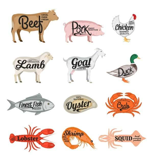 Variety of Animal protein to eat