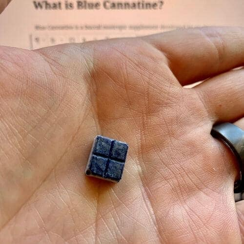 Single blue cannatine troche in the palm of a hand